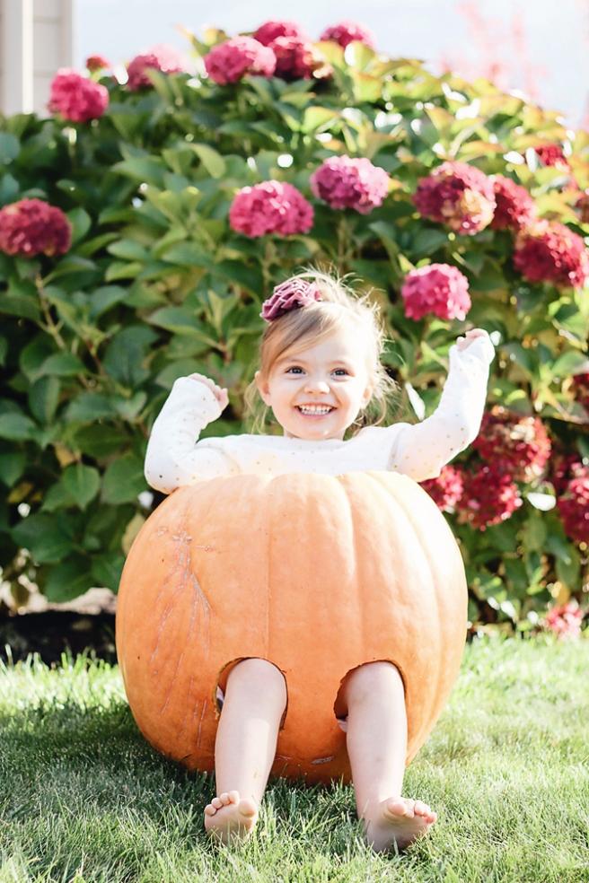 Pumpkin PP2