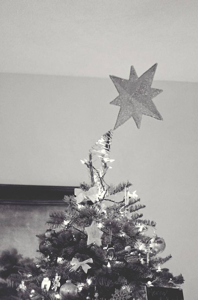 Xmas Tree3 PP